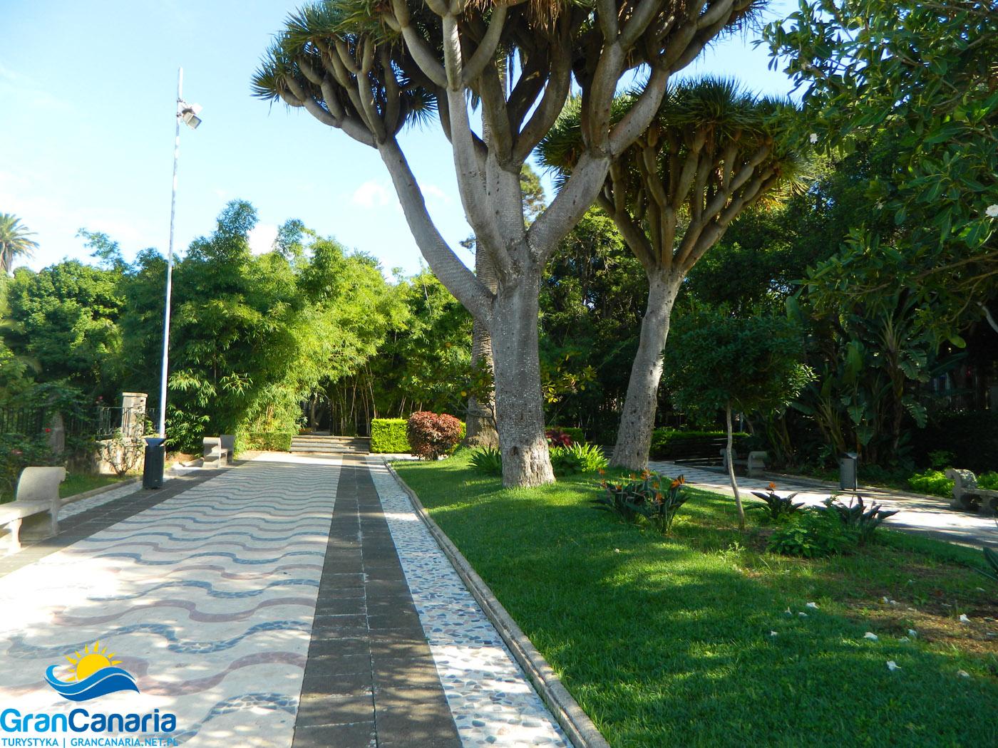 Arucas - park