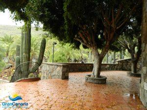 Gran Canaria - Park Cactualdea