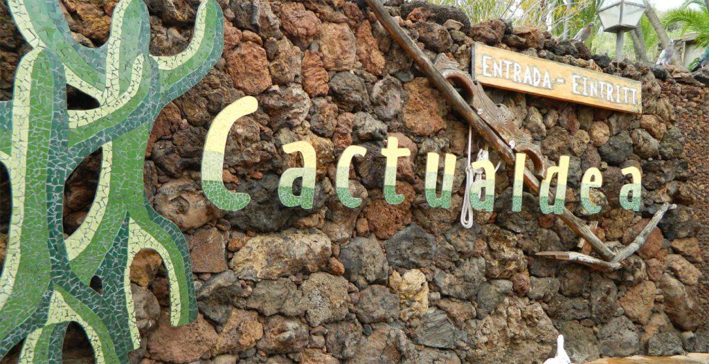 Cactualdea