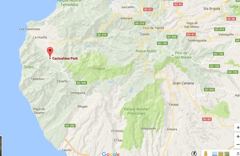 cactualdea-mapa